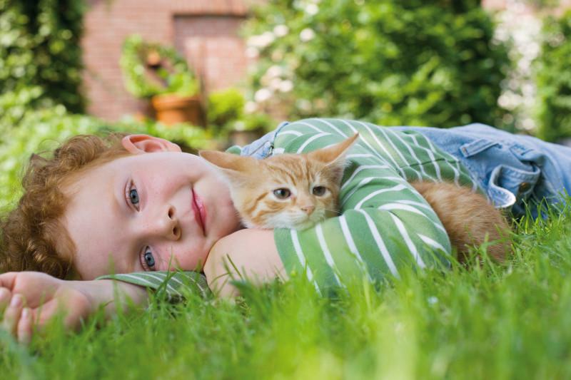 1e5857322 Práve v týchto teplých jarných dňoch je dôležité nezabudnúť na prevenciu  pred napadnutím takýmito parazitmi a čo najskôr chrániť zvieratko a  poskytnúť tak ...